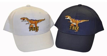 Picture of £2.99 BOYS DINOSAUR BASEBALL CAPS (24)