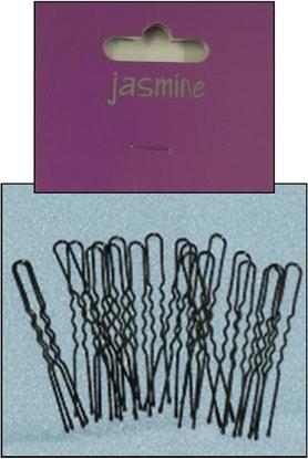 Picture of £1.00 JASMIINE BLK HAIRPINS 36 SHORT (6)