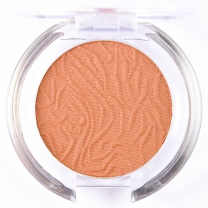 Picture of £1.99 LAVAL BLUSHERS CHINCILLA 107