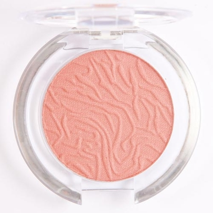 Picture of £1.99 LAVAL BLUSHER MULBERRY 101