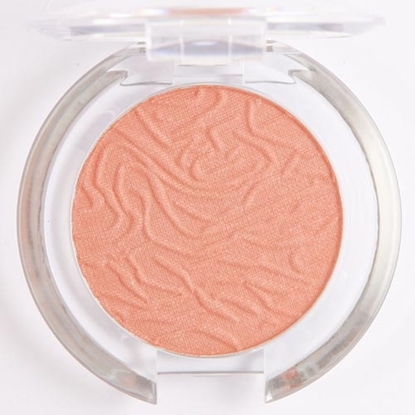 Picture of £1.99 LAVAL BLUSHER DAMSON 108