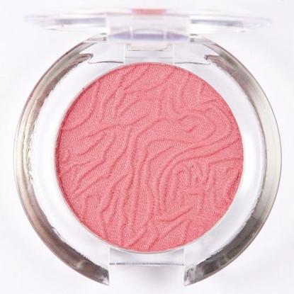 Picture of £1.99 LAVAL BLUSHER TAWNY 104