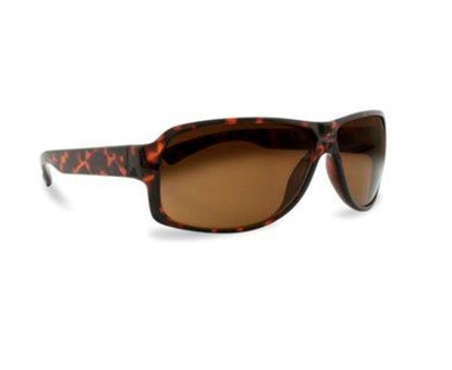 Picture of £3.99 MALE PROFILE SUNGLASSES (6) PRM143