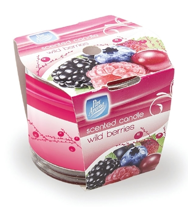Picture of £1.00 CANDLES BERRIES BOXED (12) PAN0290