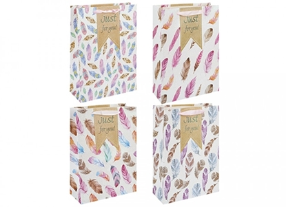Picture of £1.29 GIFT BAG FEATHERS DESIGN LARGE(12)