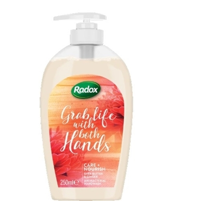 Picture of £1.00 RADOX PUMP HAND WASH CARE 250ml