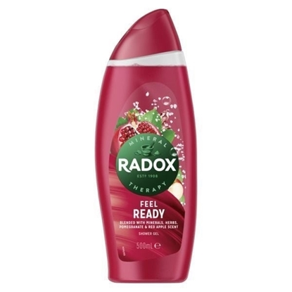 Picture of £1.00 RADOX SHOWER 250ml FEEL READY